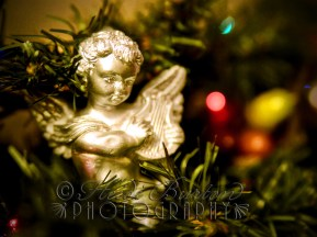 21st December 2013 - I bought this plaster cherub, unpainted, from the plasteres at Blists Hill Victorian Village, near Telford, and painted it up silver for Christmas.
