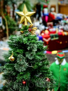 15th December 2013 -at the Christmas Fair at the Weston-super-Mare Mueum