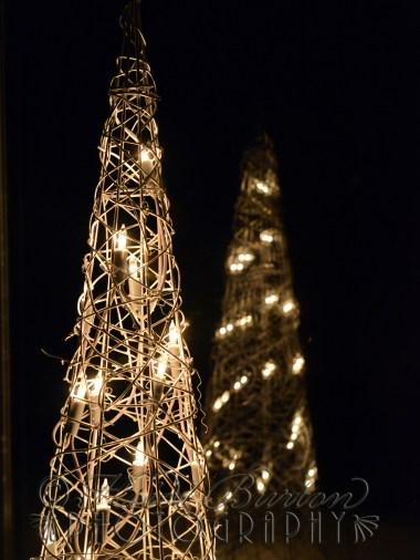 19th December 2013 - Christmas lights