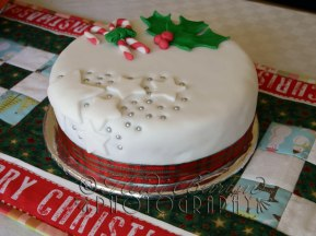22nd December 2013 - Christmas cake iced and ready for eating! Copyright Heidi Burton ABIPP. No use without the prior consent of the photographer.