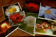 15th November 2013 - some of the photo art cards that I sell at craft fairs