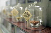 Holland & Barrett open a new concept store in the Sovereign Centre in Weston-super-Mare