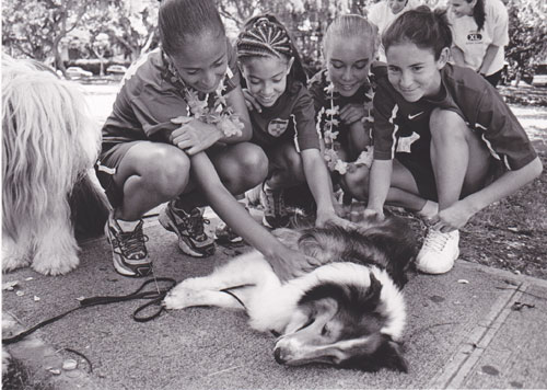 Dog meets girls | Photo © Heidi Chang