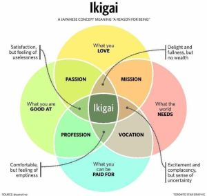 Cosa è l'Ikigai