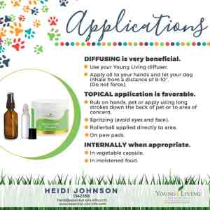 application of essential oils for dogs