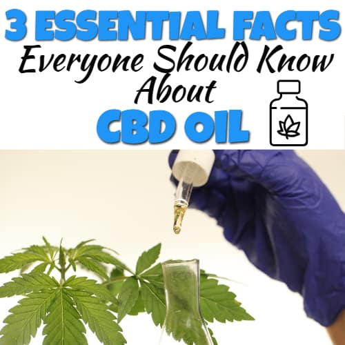 Everything You Need to Know to Buy CBD Online