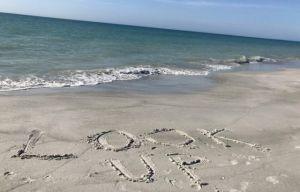 Look_Up_Mantra_Indian_Rocks_Beach