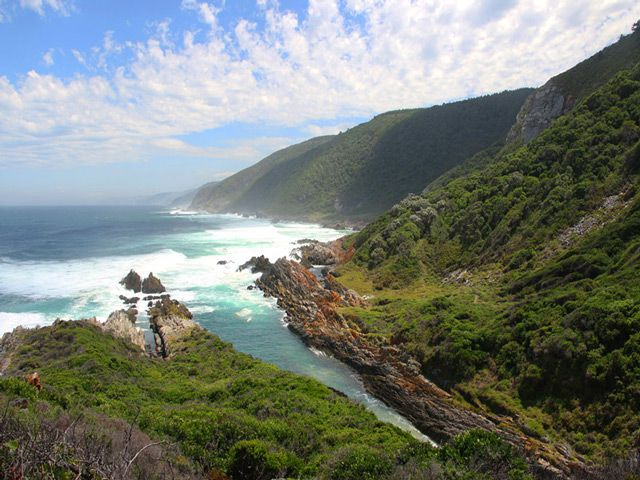 Top 5 Things to Do in South Africa