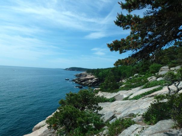 Sunny_Ocean_Path_Acadia_National_Park_Maine