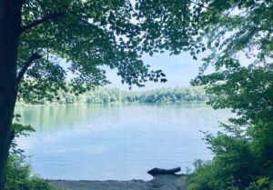 Walden_Pond_Massachusetts_by_Author_Heidi_Siefkas