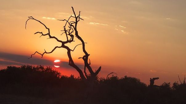 sunset-chobe-national-park