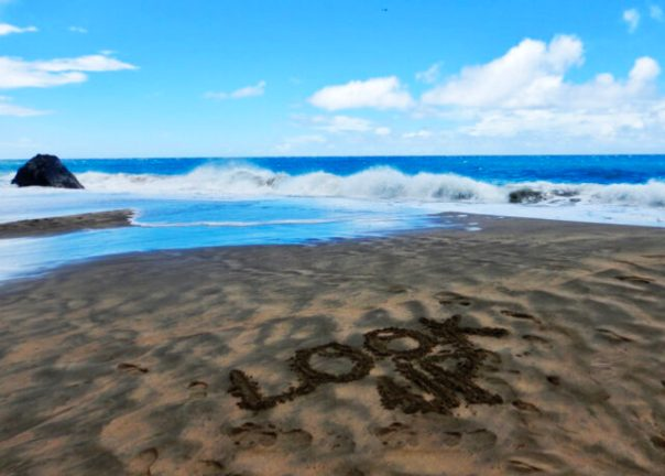Look_Up_Hanakapiai_Kauai_Hawaii