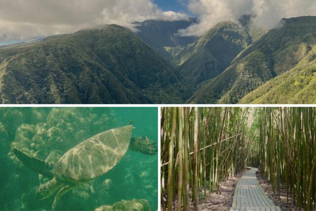 Top 3 Adventure Activities in Maui Hawaii