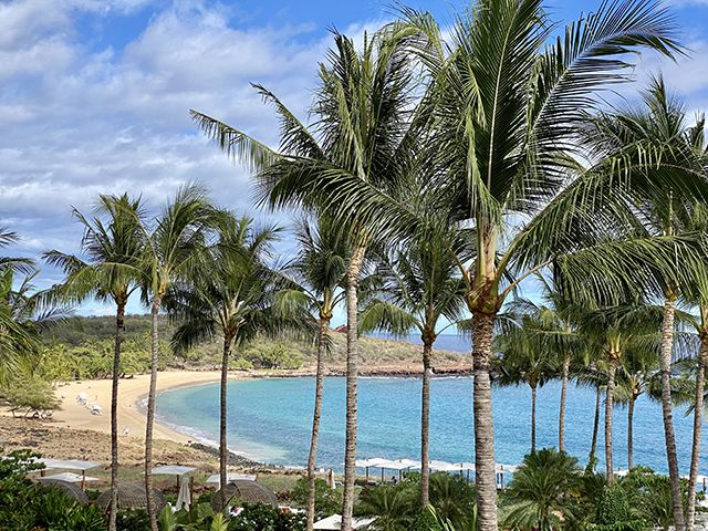 Look Up from Lanai – A Mini-Escape to Reinforce Being in the Moment
