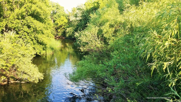 minnehaha creek by lake hiawatha