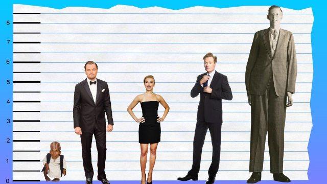 Leonardo DiCaprio's height tall