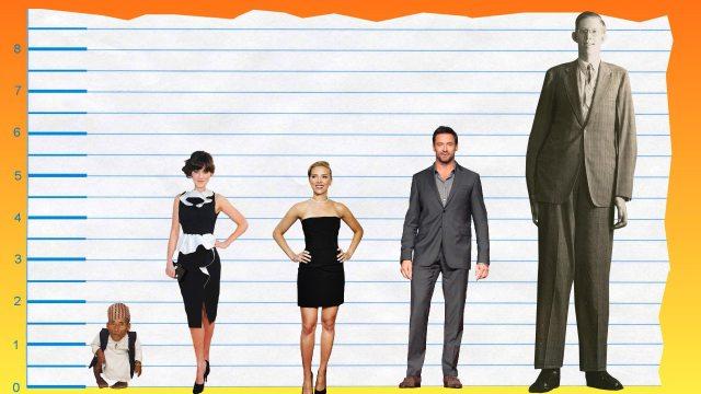 Zooey Deschanel's Height