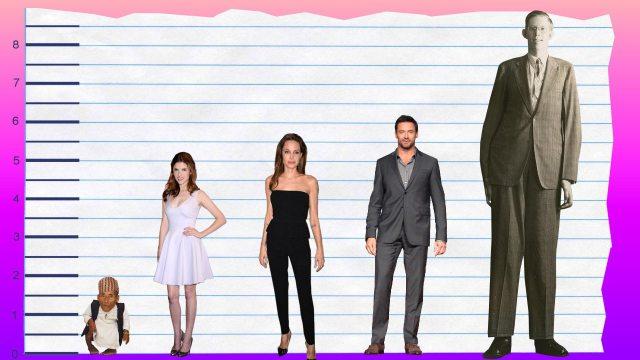 Anna Kendrick's height 5