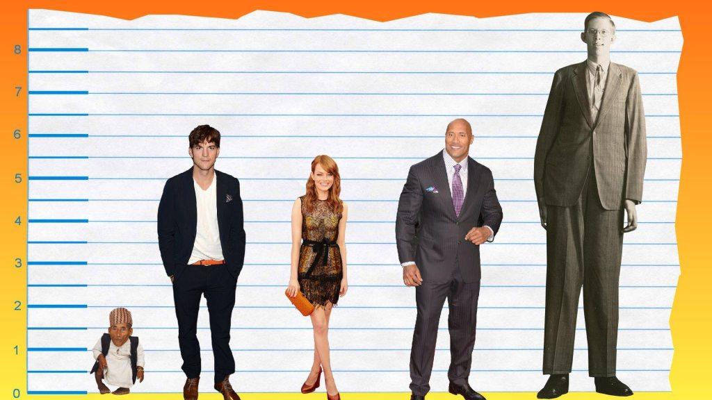 Ashton Kutcher's height