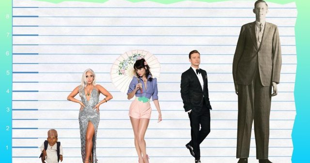 Lady Gaga's height 4