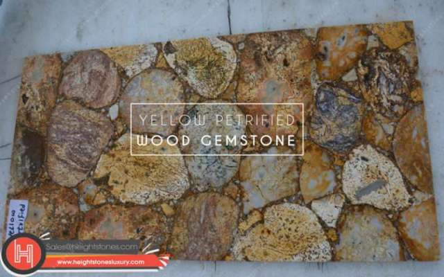 Yellow Petrified Wood Gemstone Tiles Slabs Surface