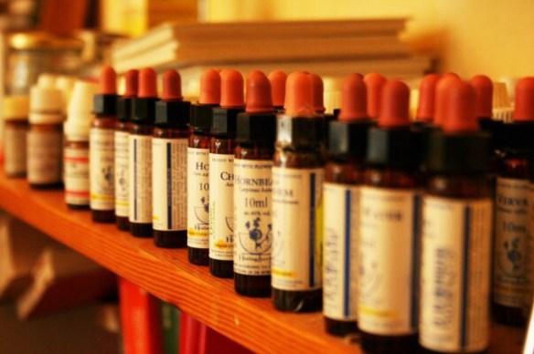 Bachblütentherapie bei Naturheilpraxis Doris Seedorf