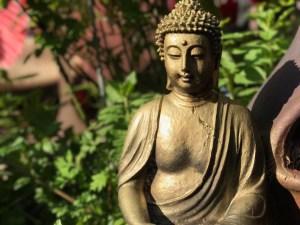 Spirituelle Onlinekurse für deine Transformation mit Qigong und Meditation via Skype @ Online Event