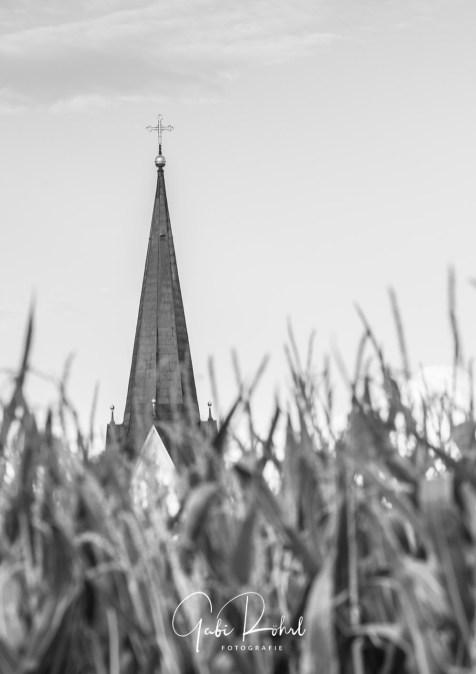galerie kirchturm maisfeld