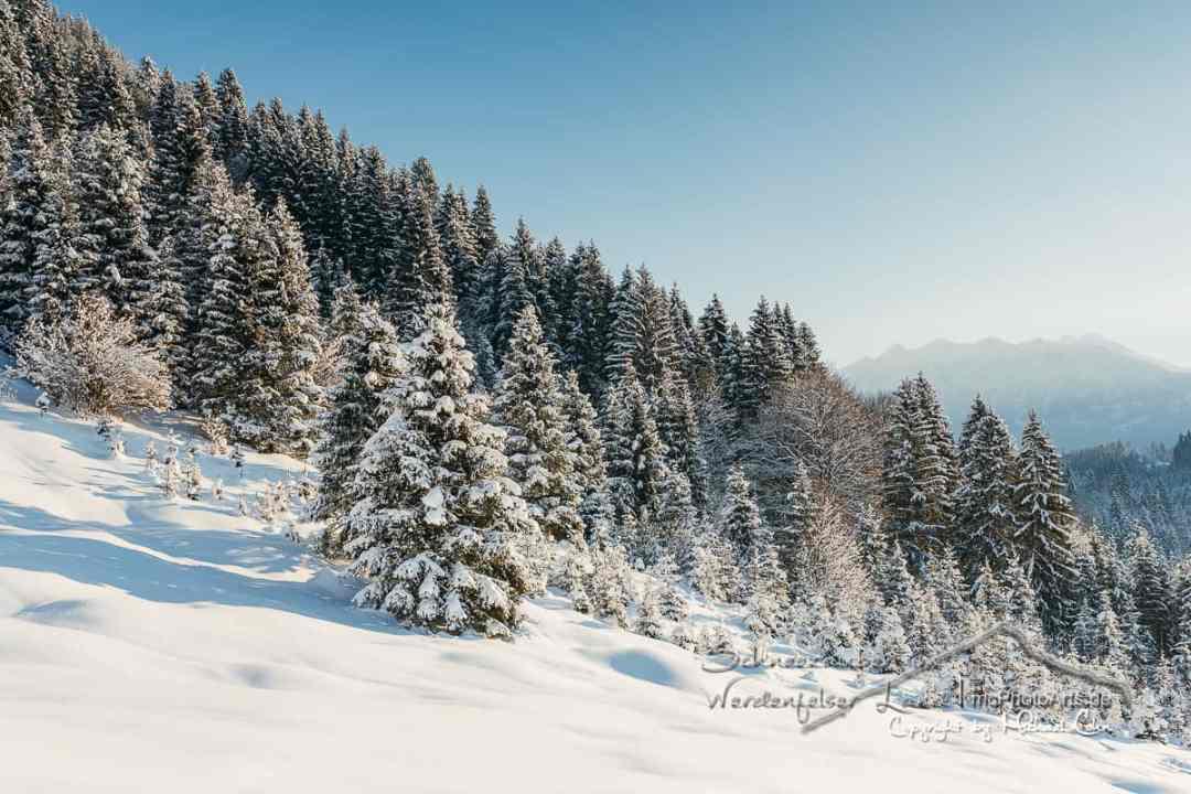 Schneezauber im Werdenfelser Land
