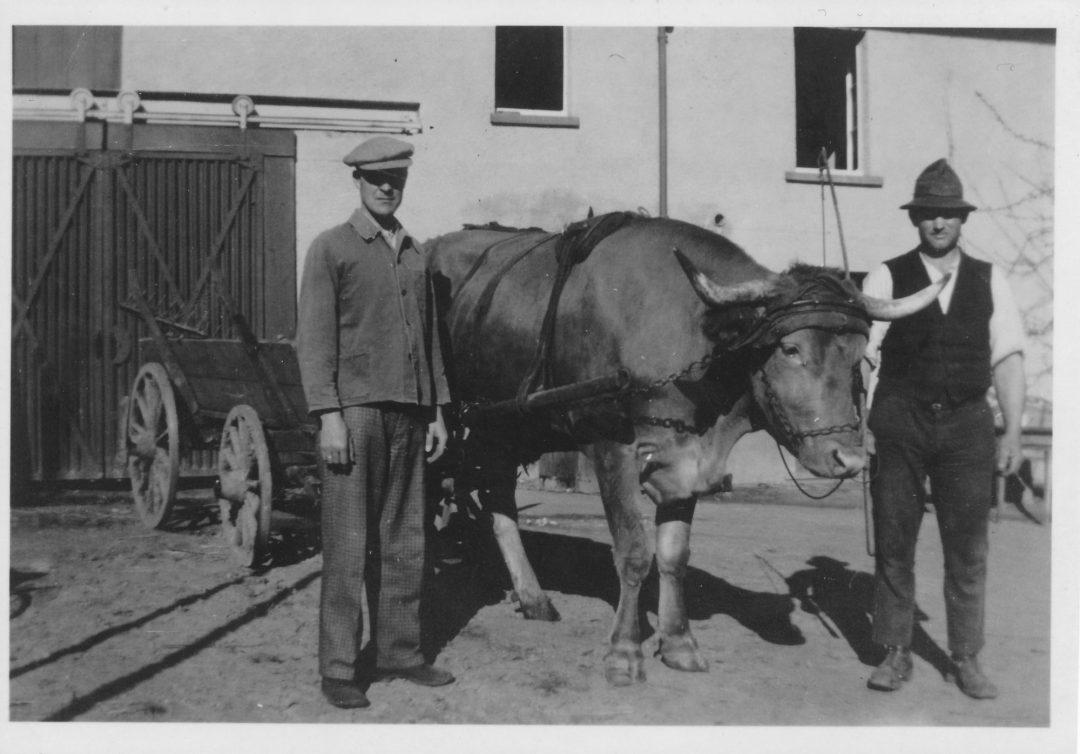 1930er Jahre Horchheim Landwirtschaft Karl Pretz mit Sohn Franz, gefallen in Russland