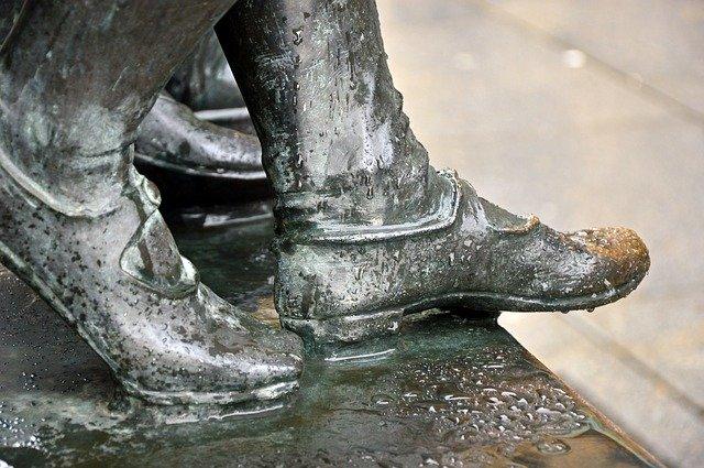Shoe dryer sororifily or boot dryer