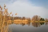 Bischdorfer Teiche