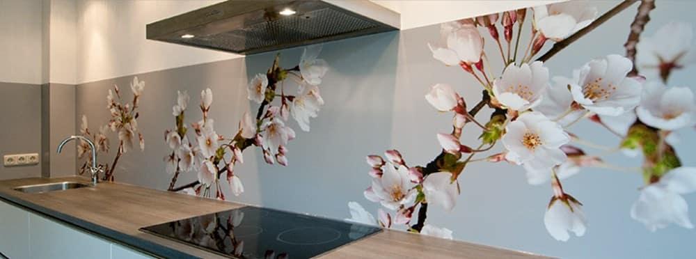 Küchenrückwand aus Acrylglas - praktisch, stilvoll und bezahlbar