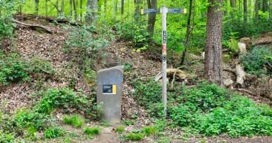Bergischer Weg Etappe 7