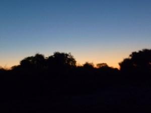 チョベ国立公園の夕暮れ