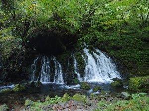 鳥海山からの湧水「元滝伏流水」