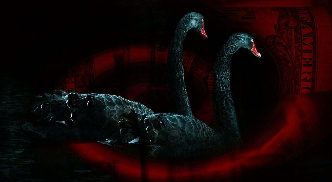 'We're Living In A Black Swan Scenario': Equity Positioning Just Plunged To GFC Lows