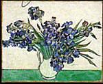 لقد رسم ڤان گوخ أزهارا خلال وجوده في مستشفى الأمراض العقلية بسان ريمي.