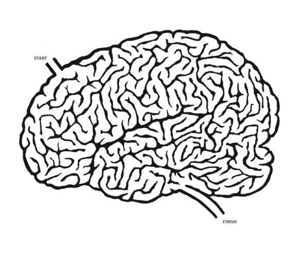 كيف للجينات تشكيل عقولنا؟ الأمر معقد! - كيفين ميتشل / ترجمة: همام المرتضي