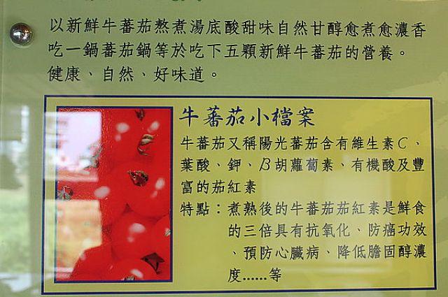 花蓮牛蕃茄