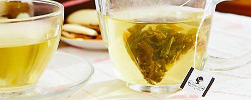 烏龍茶茶包