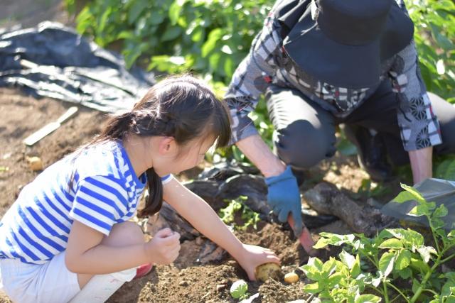 德國教養:讓孩子多吃點苦,長大後就不會受苦