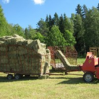 FARM KIDS AND FLYING HAY.