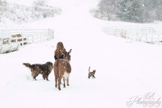 Snowy Day ~ Child Photographer | Beaver County, PA Photographer