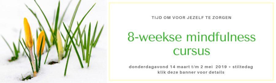 MBSR training Mindfulness Amsterdam 14 maart 2019