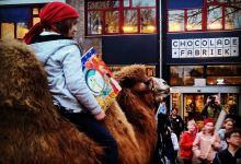 Tobias en zijn kameel