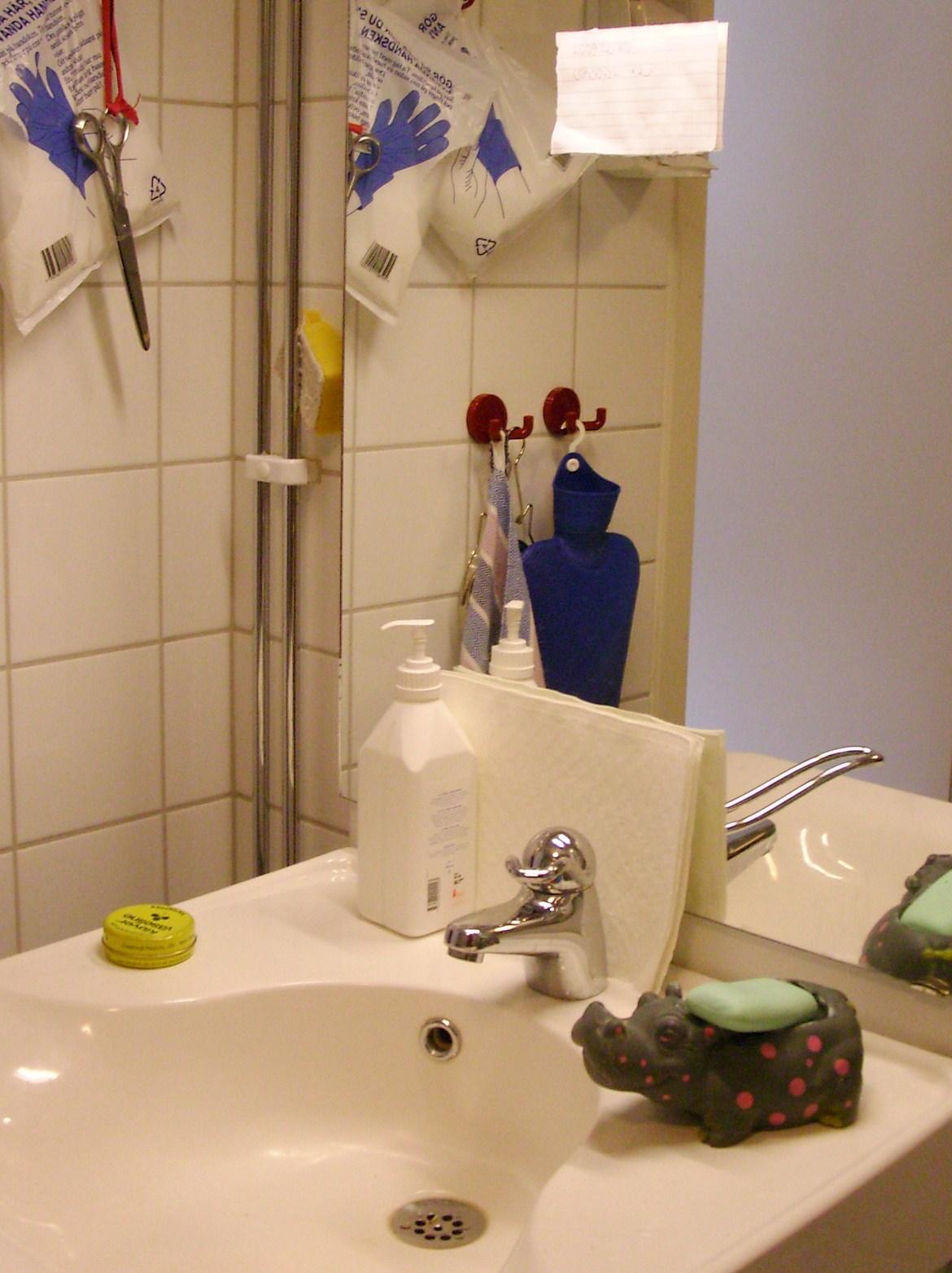 flodhäst i badrummet