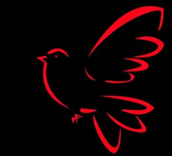 Logo Hari Merdeka Pakatan ada elemen-elemen Kristian  (2/6)