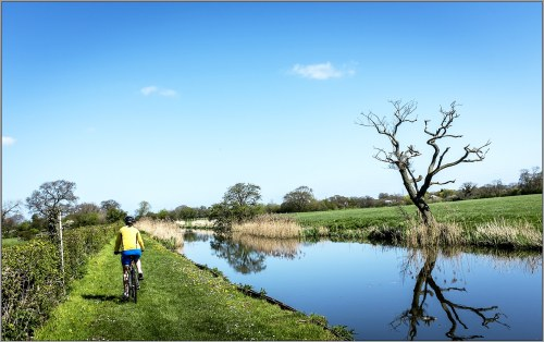 Cyclist on canal towpath