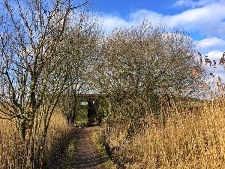 The Lower Hide RSPB Leightin Moss birdwatching